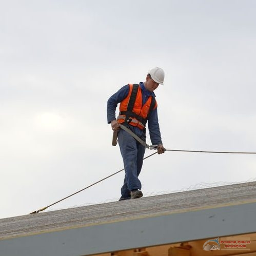 Roofer Walking On Roof with Safety Harness.