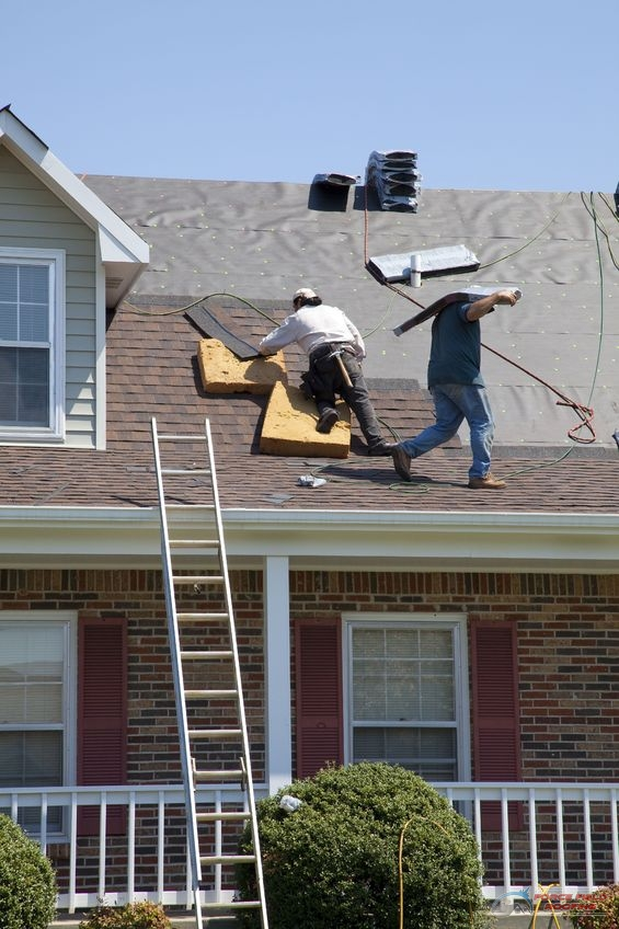 A Picture of Roofers Replacing Damaged Shingles After a Storm.